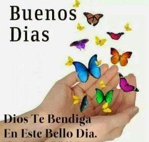 buenos dias dios te bendiga bello dia